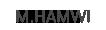 mohammad hamwi Logo